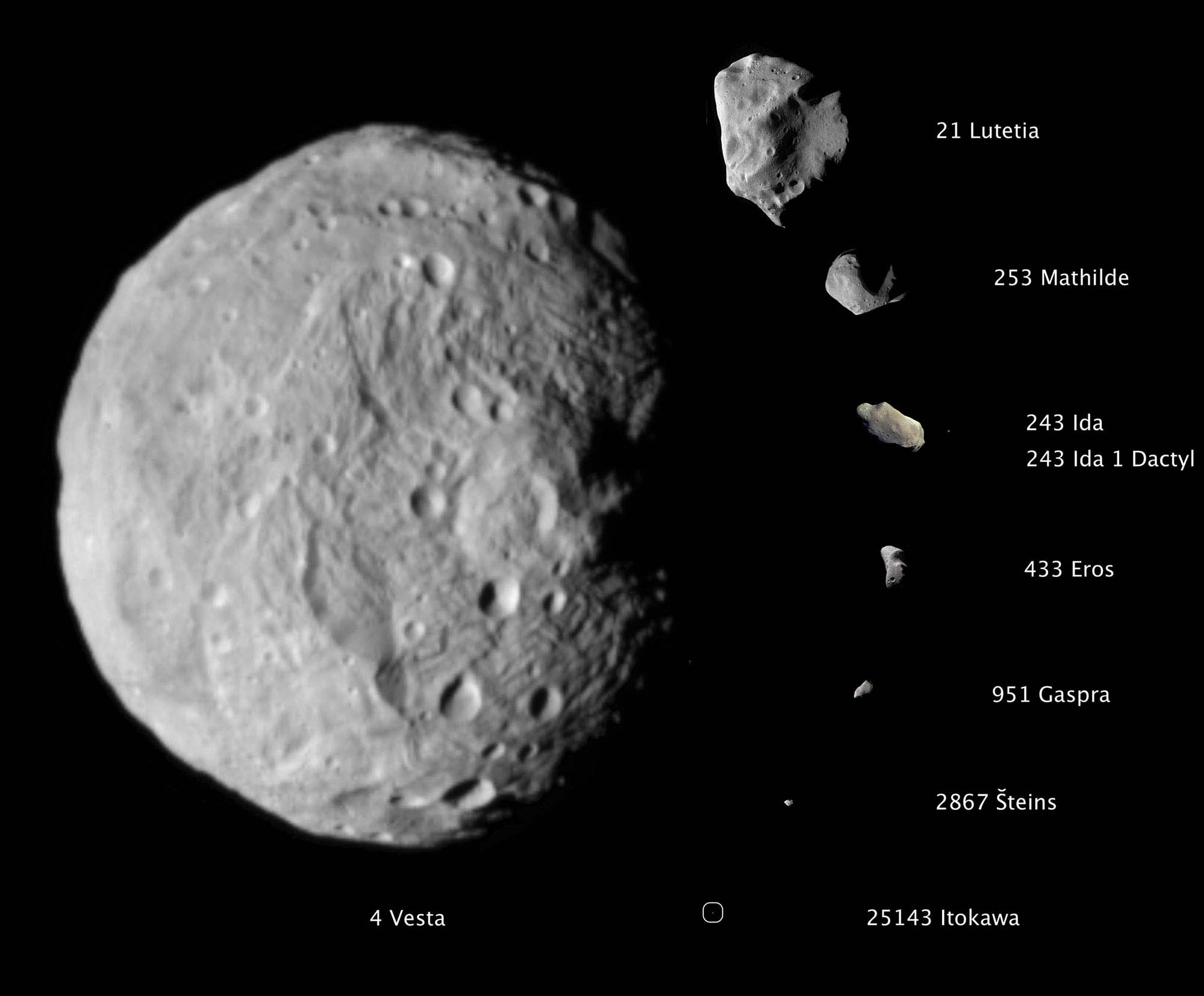 Vesta_plus_Asteroids.jpg
